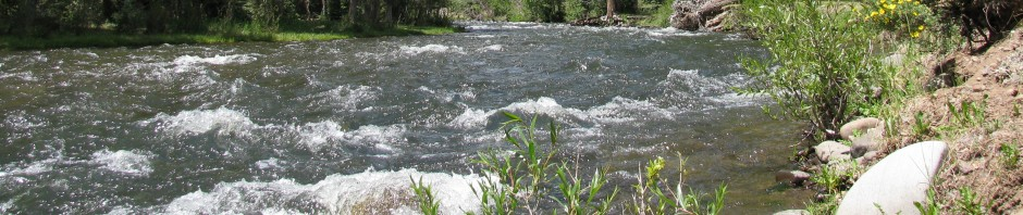 River water needs water purification system treatment before drinking
